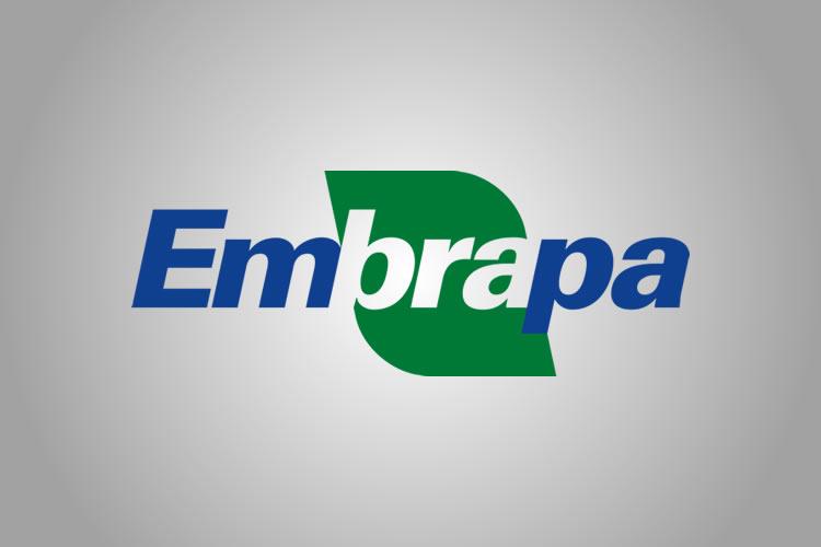 Embrapa Amapá comemora 39 anos apoiando pesquisas e parcerias com UNIFAP