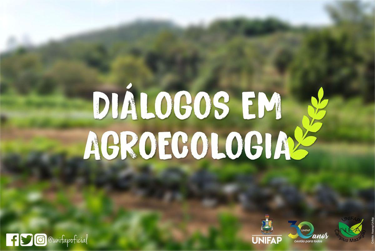 'Diálogos em Agroecologia' terá live sobre sustentabilidade em sistemas agroflorestais